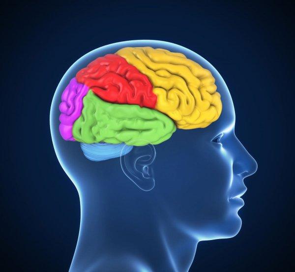 Ученые изобрели светящиеся микролазеры для выявления заболеваний мозга