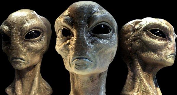 NASA: Инопланетная раса может отличаться по внешнему виду от человека