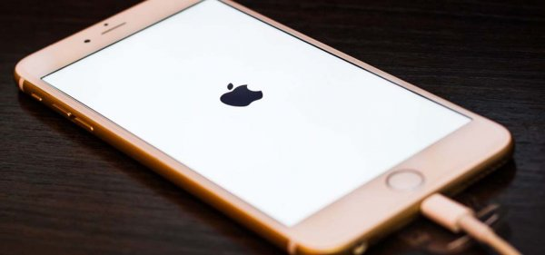 В сеть слили изображения зарядки для грядущего флагмана iPhone