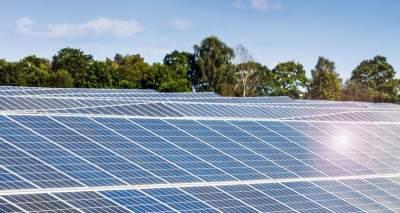 Ученые разработали бактериальные солнечные батареи