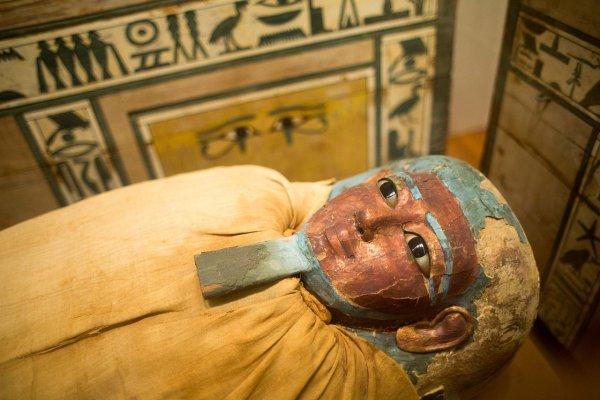Спецслужбы обнаружили в Египте мумию фараона-инопланетянина