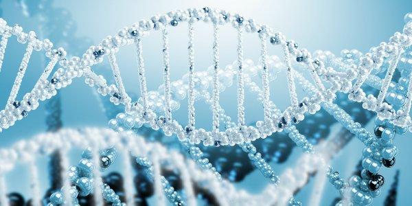 Лечение рака с помощью редактирования ДНК оказалось смертельно опасным