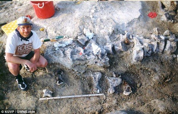 Ученые: Самый крупный из найденных следов динозавров оставил брахиозавр