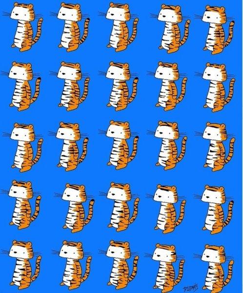 Головоломка о тигре без двойника озадачила пользователей Сети