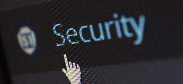 Synaptics и AMD создадут защищённую систему идентификации для ОС Microsoft