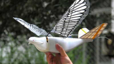 В Китае появился голубь-беспилотник