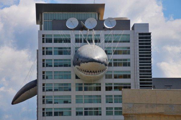 Discovery собирается запустить свой онлайн-кинотеатр